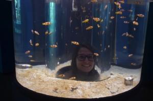 Hi Nemo x1000
