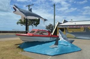 Hervey Bay - Shark Museum