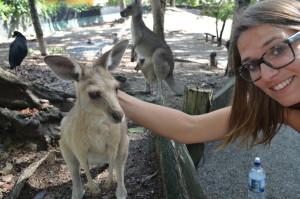 Kangeroe Selfie