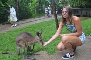 Kangeroe love