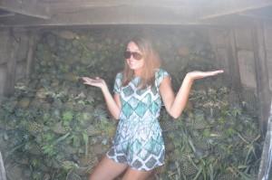 Pineapple anyone?!